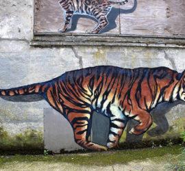 Horscope Chinois pour le Tigre année du Chien