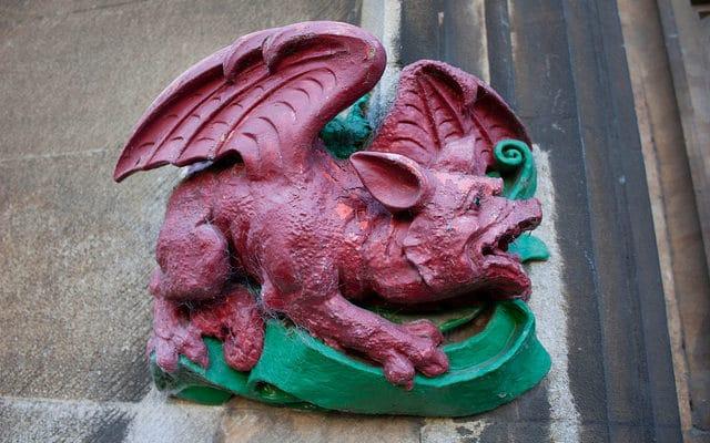 Année du Cochon horoscope Dragon