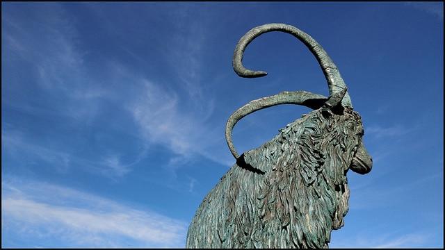 Année du Cochon horoscope Chevre