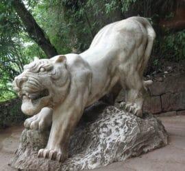 Predictions signe du Tigre 2020
